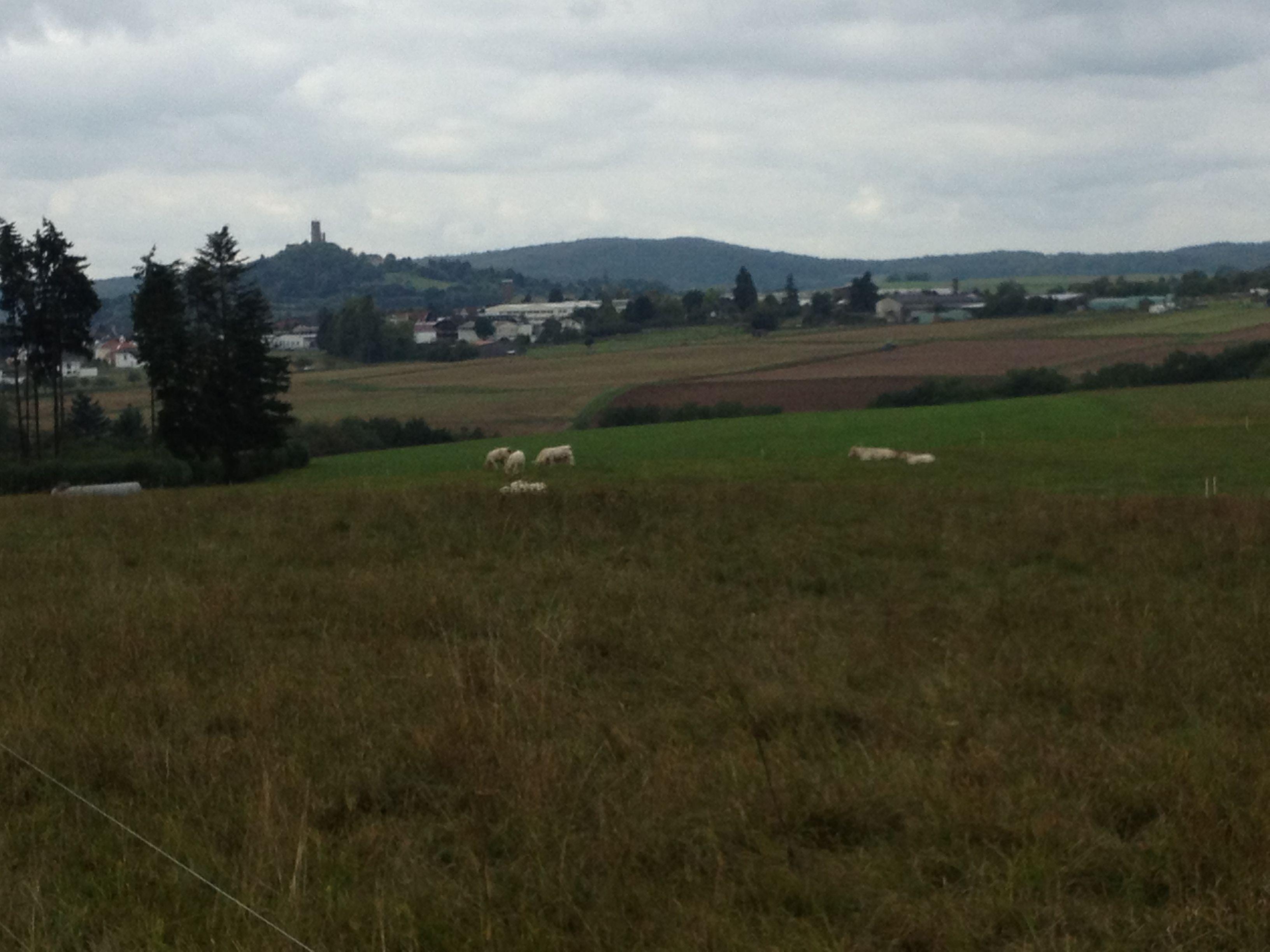 Blick auf den Gleiberg